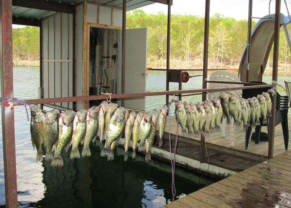 fishhanging